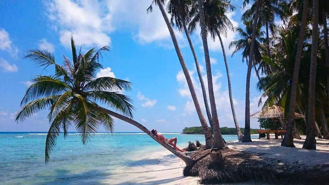 samovar maldive Ocean Cottage Guesthouse