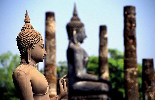Templi thailandia Samovar